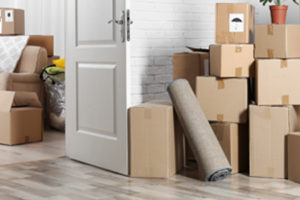 Top Best Packers and Movers